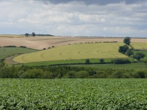 East Yorkshire farming scene