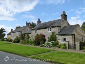 Langton village houses