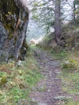 Stony Path