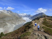 This ridge is also the route of the Aletsch half marathon.