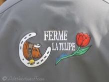 Jacket emblem