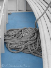 Random rope (one point colour)