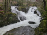 Due to the volume of rain this normally gentle river, was a raging torrent !