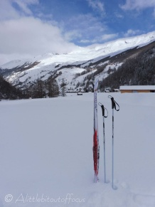 Skis and poles