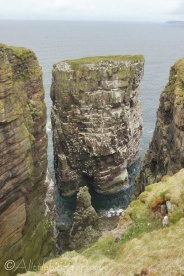 12 Sea stack with nesting birds