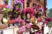 2 Café du Relais flowers