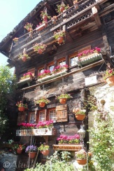 32 Chalet flowers