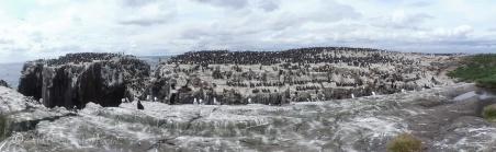 8 Island panorama