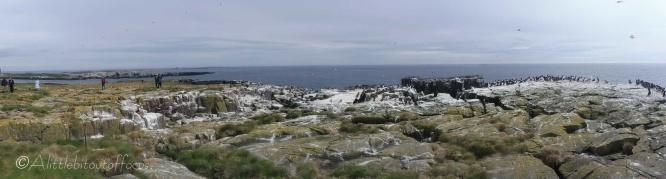 9 Panorama