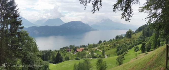 11 Lake view