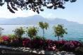 6 Lakeside view