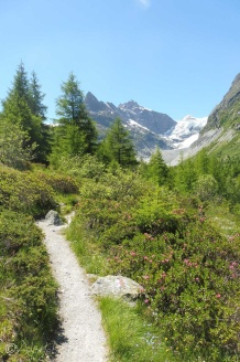 7 Path along the valley