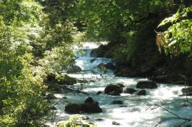 1 River Borgne