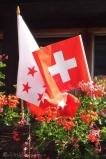 1 Valaisan and Swiss flags