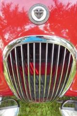 10 Jaguar Grille