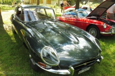 13 E Type Jaguar