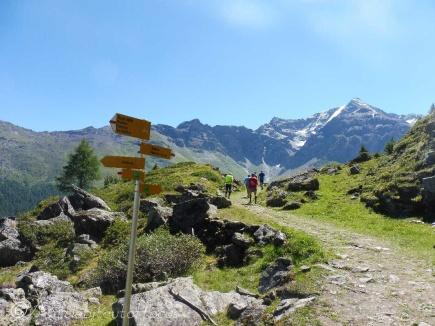 15 Signpost