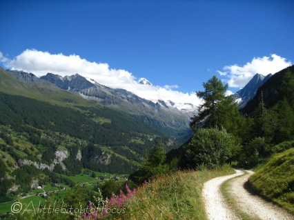 17 Track to Lac d'Arbey