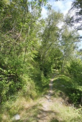 4 Path