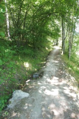 6 Path with Bisse to left