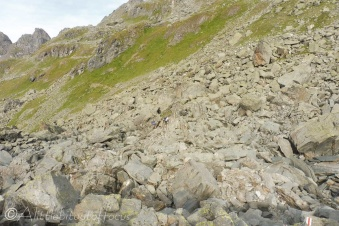 5-rocky-path