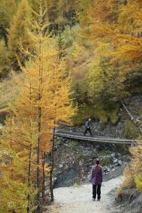 18-alex-crossing-the-wonky-bridge