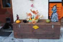 24-halloween-scene-including-black-cat