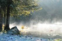 12-misty-morning