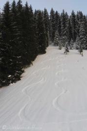 25-ski-trails