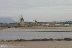 4-windmills