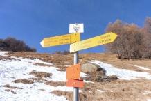 10-signpost