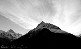 2-dent-blanche-l-and-veisivis-bw