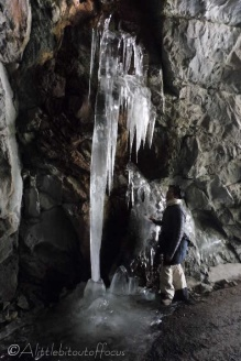 6-icicles