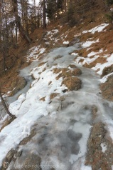 9-frozen-path