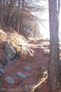 1-path