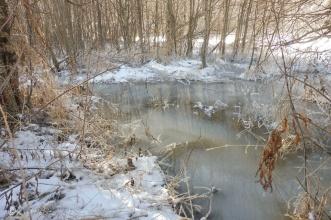 14-frozen-river