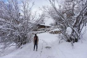 14-snowy-track