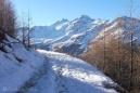 16-snowy-track