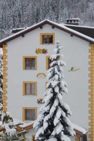 17-snowy-tree
