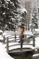 18-snowy-bridge