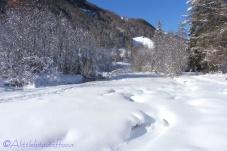 2-snow-scene