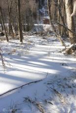 5-frozen-stream
