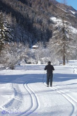 6-cross-country-skier
