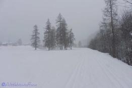 12-snowy-scene