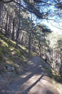 14-nice-path