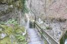 22-steps