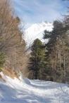 3-snowy-path