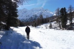 8-ian-on-the-path