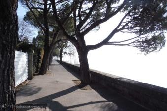 9-lakeside-path