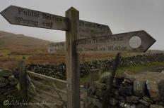 10 Signpost